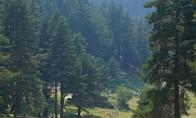 Vezirköprü Ağcayazı köyü